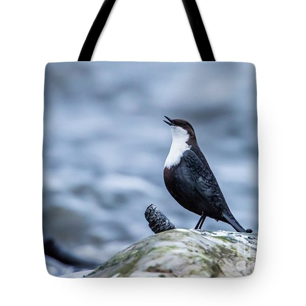 Tote Bag featuring the photograph Dipper's Call by Torbjorn Swenelius