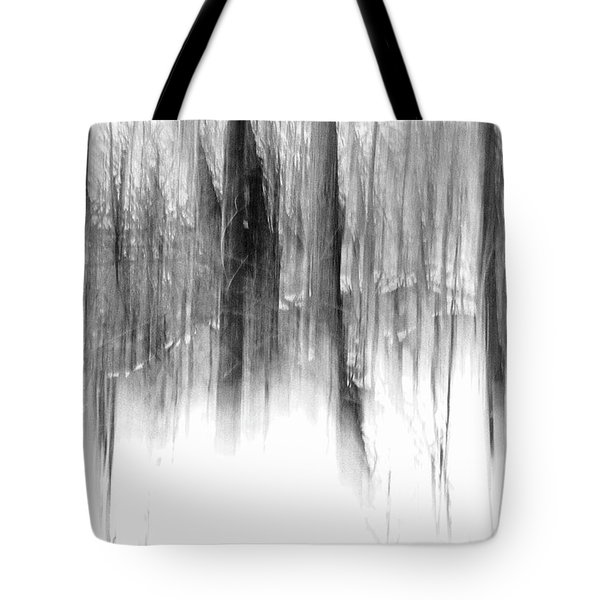 Disappearance Tote Bag by Steven Huszar