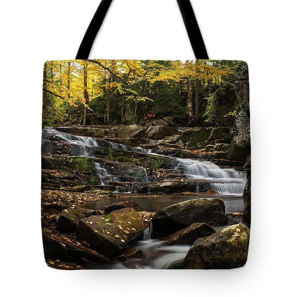 Discovery Falls Autumn Tote Bag