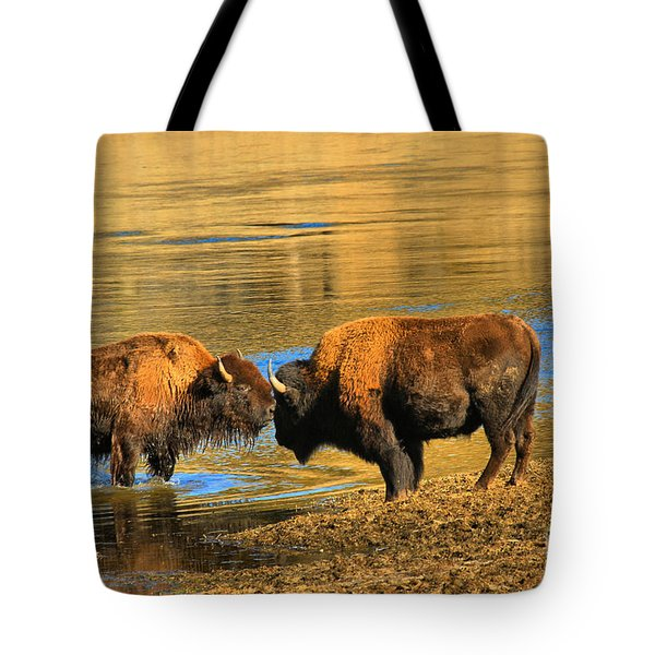 Tote Bag featuring the photograph Discussing The Crossing by Adam Jewell
