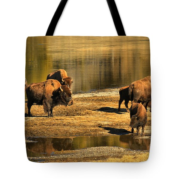 Tote Bag featuring the photograph Discussing The River Crossing by Adam Jewell