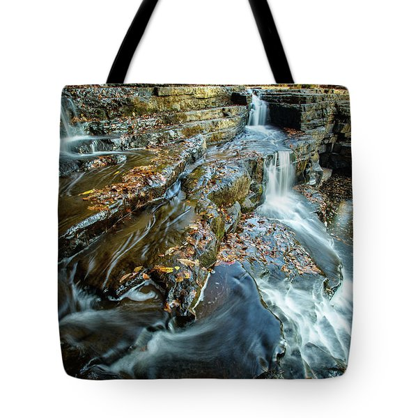 Dismal Creek Falls #2 Tote Bag