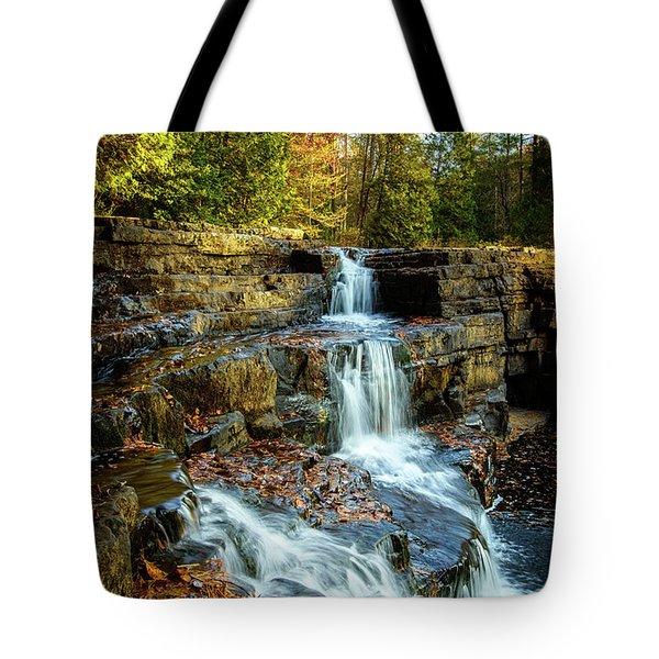 Dismal Falls #3 Tote Bag
