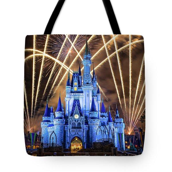 Disney World Tote Bag by Anna Rumiantseva