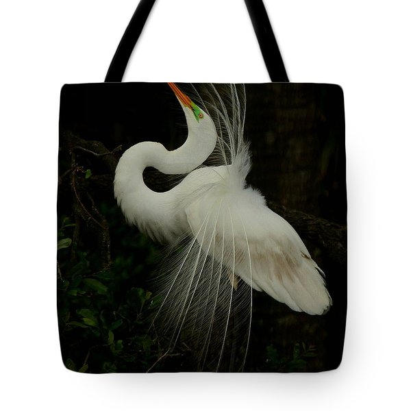 Displaying In The Shadows Tote Bag by Myrna Bradshaw
