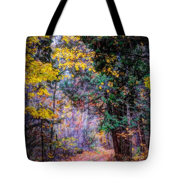Distant Path Tote Bag