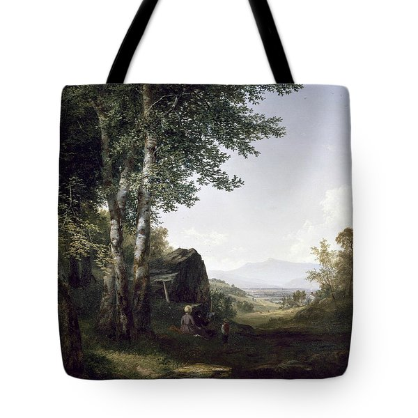 Distant View Of The Mansfield Mountain Vermont Tote Bag