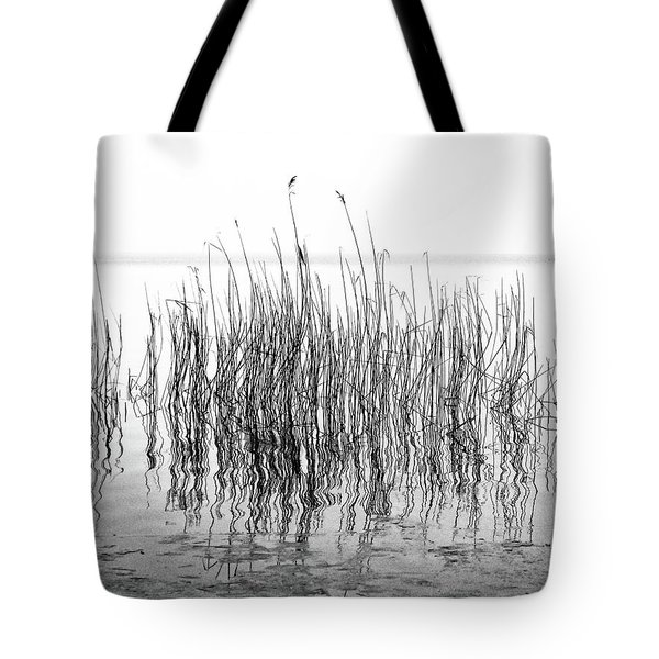 Distortion  Tote Bag by Karen Stahlros