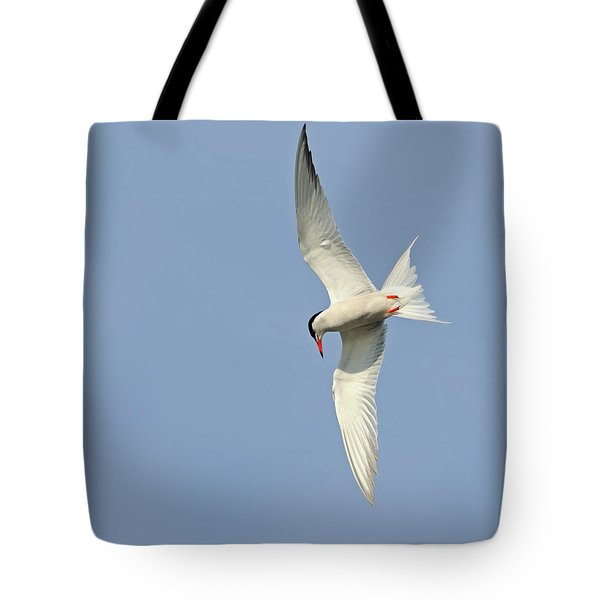 Tote Bag featuring the photograph Dive by Tony Beck