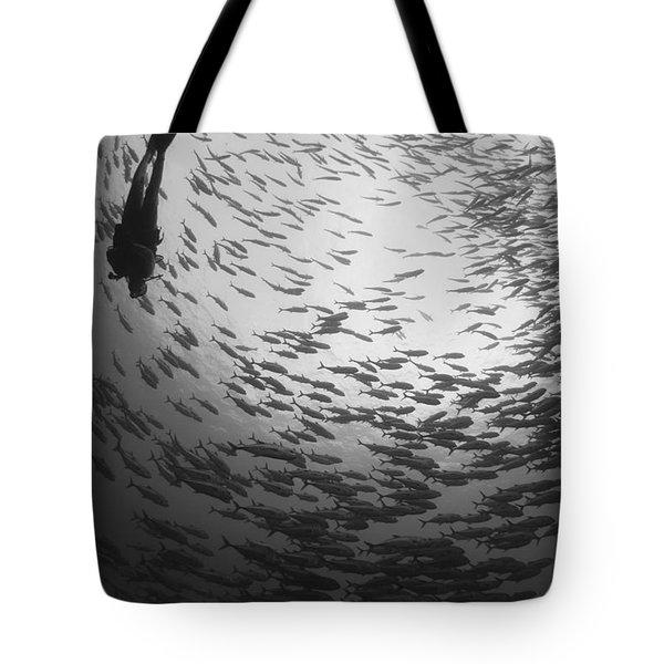 Diver And A Large School Of Bigeye Tote Bag by Steve Jones
