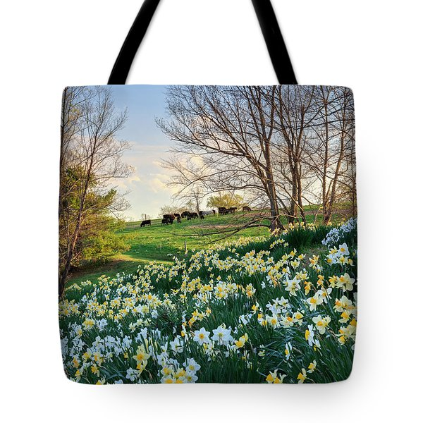 Tote Bag featuring the photograph Divine Bovines by Bill Wakeley