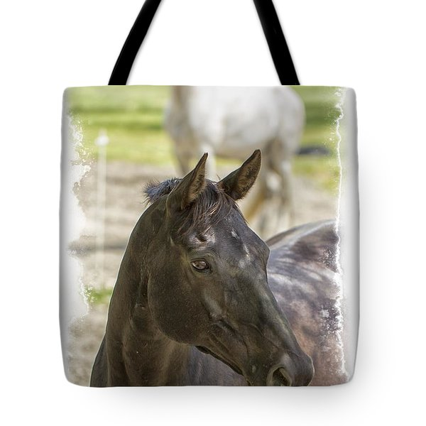 Tote Bag featuring the photograph Divine Equines Photo Art by Constantine Gregory