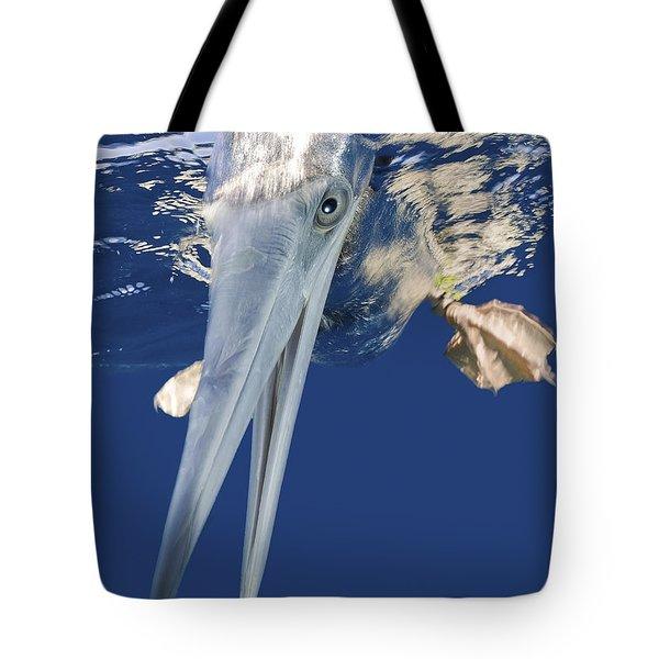 Diving Brown Booby Tote Bag