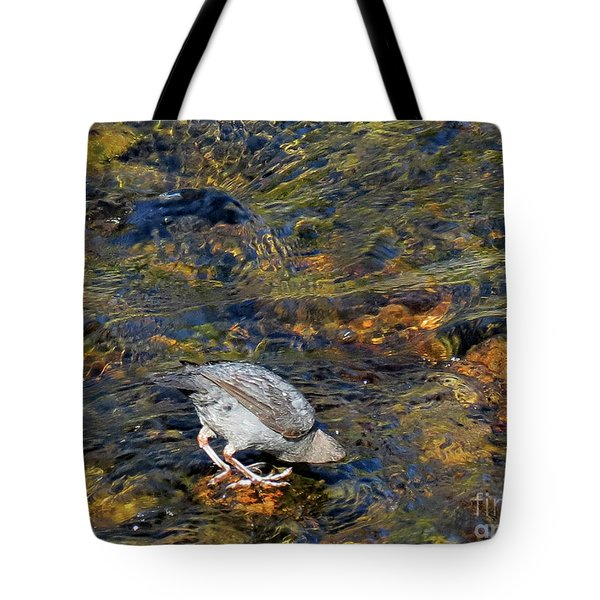 Tote Bag featuring the photograph Diving For Food by Ausra Huntington nee Paulauskaite
