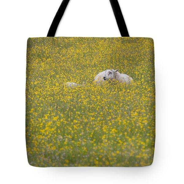 Do Ewe Like Buttercups? Tote Bag