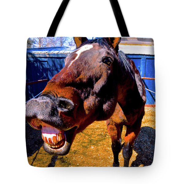 Do You Have A Treat For Me? Tote Bag