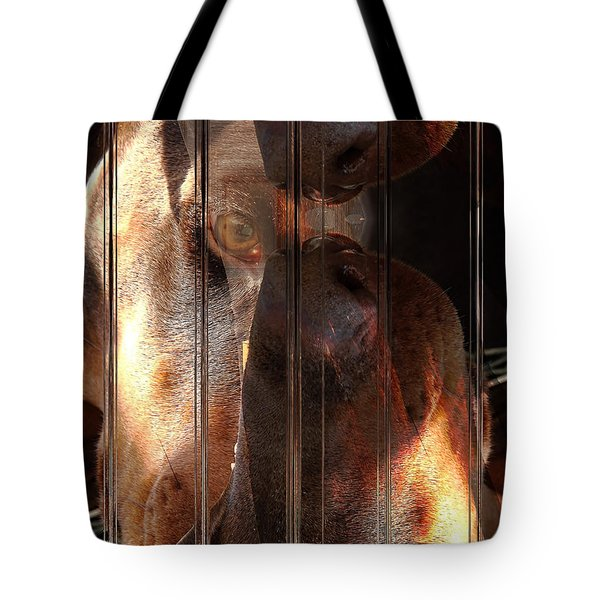 Doberman Pincher Tote Bag by Liane Wright