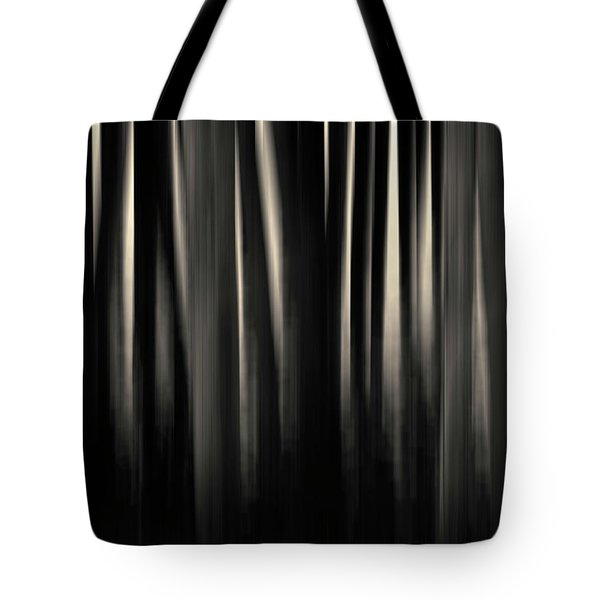 Dock And Reflection II Toned Tote Bag