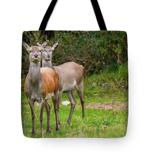 Doe Eyed Tote Bag