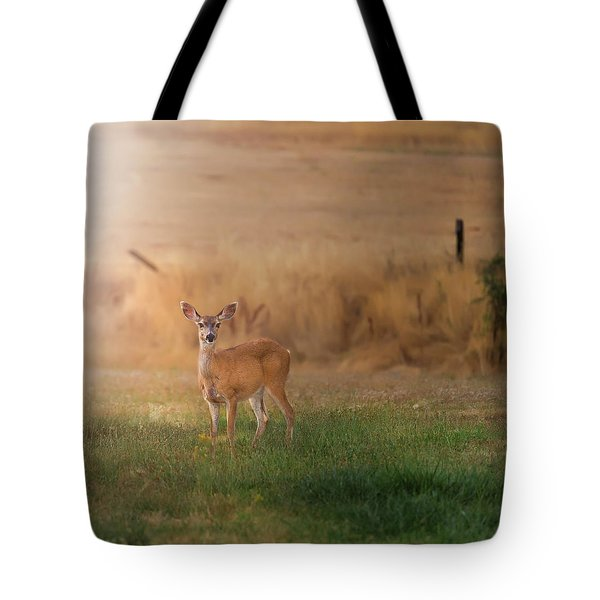 Doe At Sunset Tote Bag