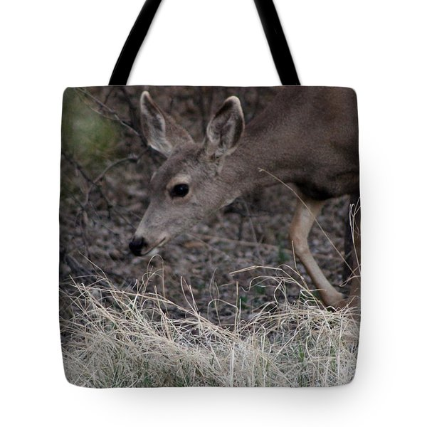 Doe Carefully Grazing In Tombstone Tote Bag by Colleen Cornelius
