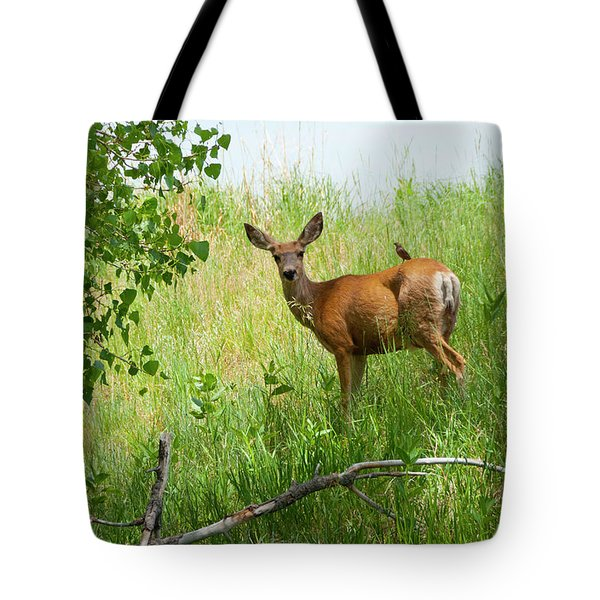 Doe Meets Bird 2 Tote Bag