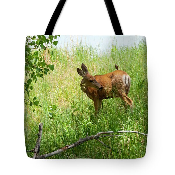 Doe Meets Bird 3 Tote Bag