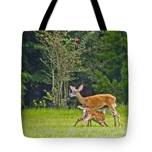 Tote Bag featuring the photograph Doe Nursing Fawn by Terri Mills