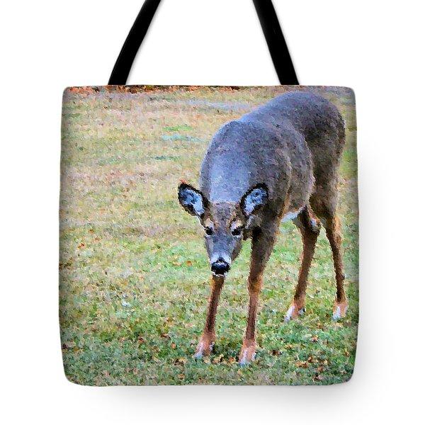 Doe Stomp Tote Bag by Kristin Elmquist