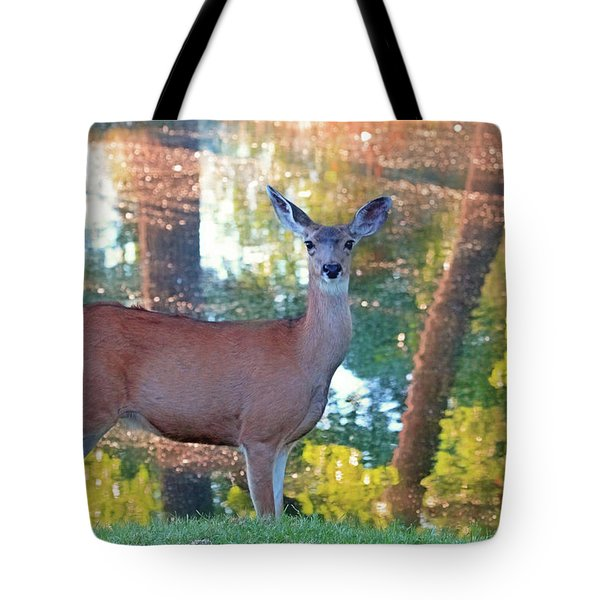 Doe Surprise Tote Bag