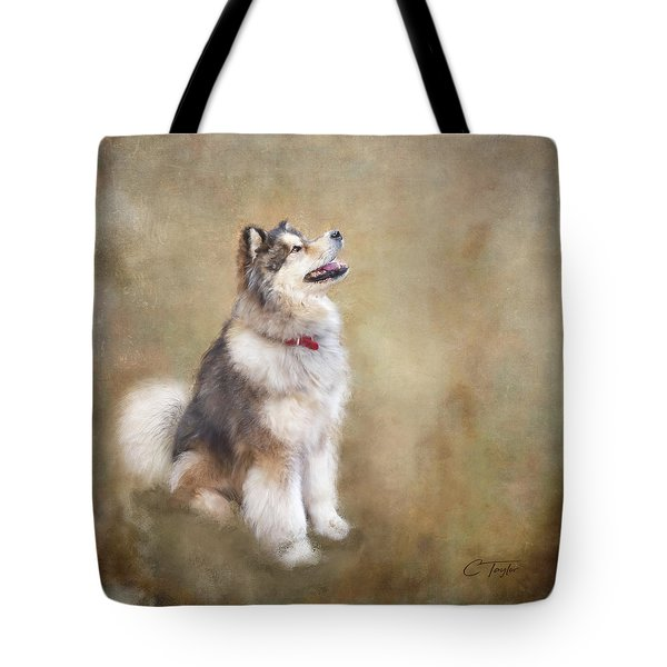 Tote Bag featuring the digital art Master Of The Domain by Colleen Taylor