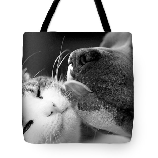 Dog And Cat  Tote Bag by Sumit Mehndiratta