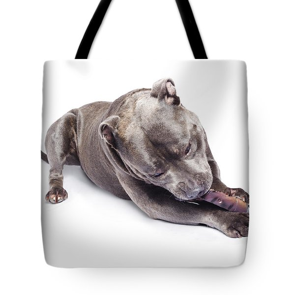 Tote Bag featuring the photograph Dog Eating Chew Toy by Jorgo Photography - Wall Art Gallery