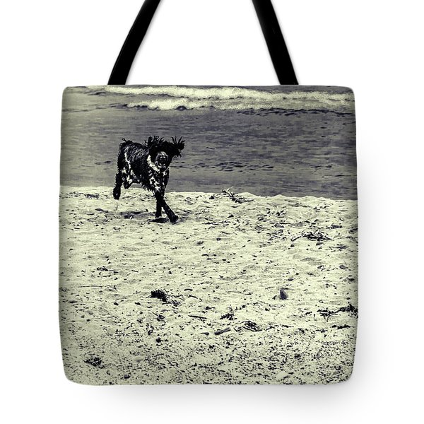 Dog Frolicking On A Beach Tote Bag by Ken Morris
