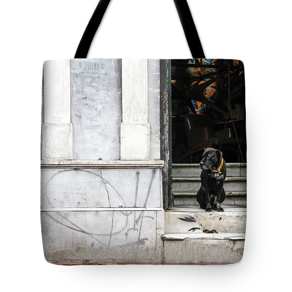 Dog From The Block Tote Bag by Silvia Bruno