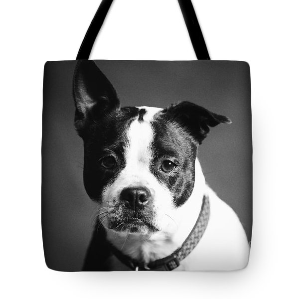 Dog - Monochrome 1 Tote Bag
