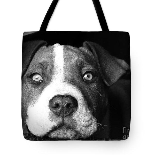 Dog - Monochrome 2 Tote Bag