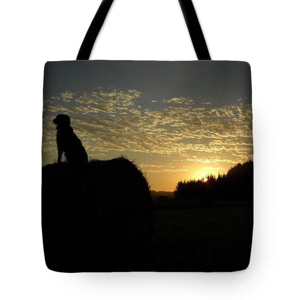 Dog On Hay Greeting Sunrise Tote Bag