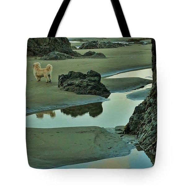 dog on Irish Beach Tote Bag