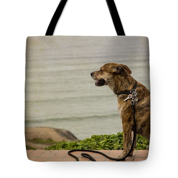 Dog On The Beach Tote Bag