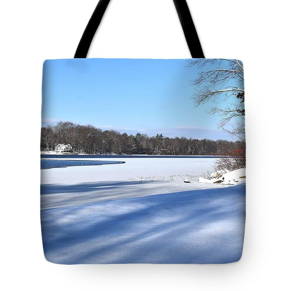Dog Pond In Winter 1 Tote Bag