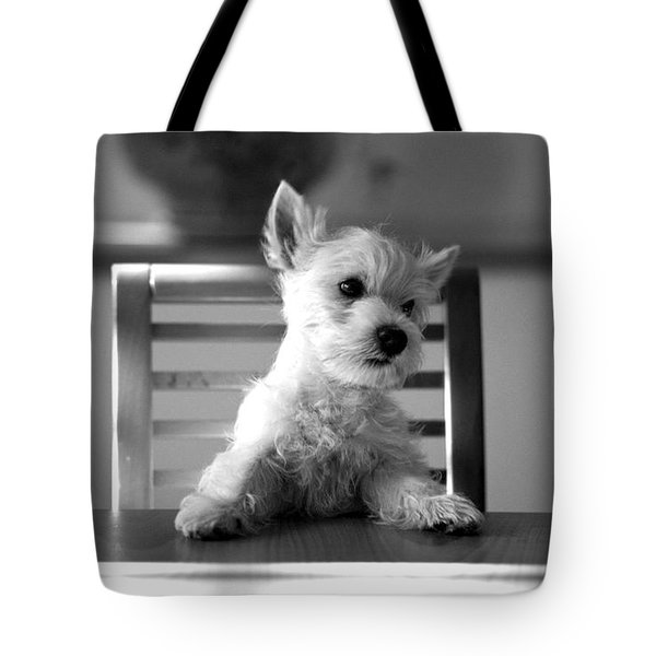 Dog Sitting On The Table Tote Bag
