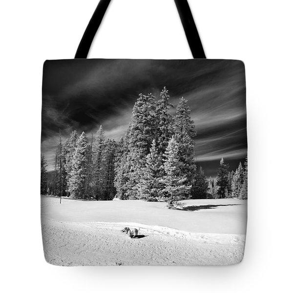 Dog Vs Mountain Tote Bag