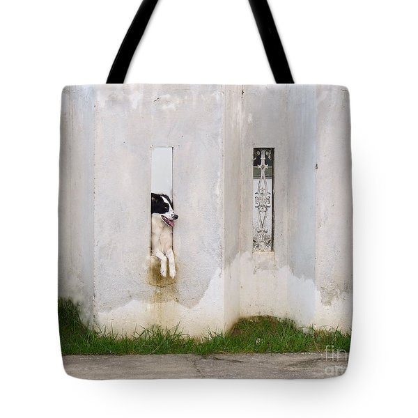 Dog Watching Tote Bag