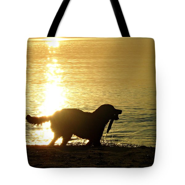 Doggy Beach Dreams Tote Bag