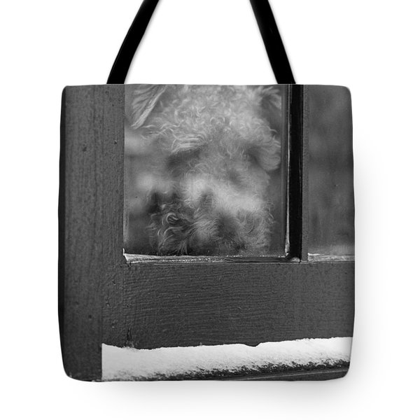 Doggy In The Window Tote Bag