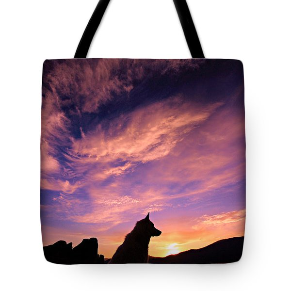 Dogs Dream Too Tote Bag