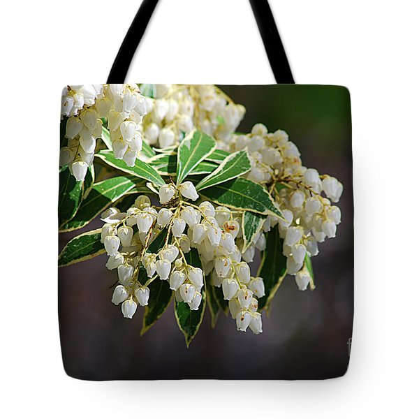 Tote Bag featuring the photograph Dog's Hobble 20120402_106a by Tina Hopkins