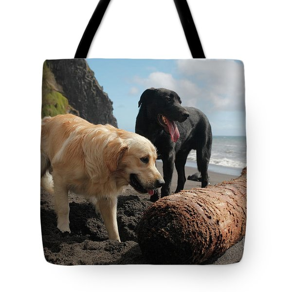 Dogs Playing At The Beach Tote Bag by Gaspar Avila