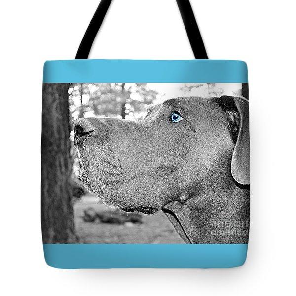 Dogus Tote Bag